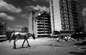 An emaciated horse walks down in central Tyre, Lebanon, past buildings damaged by Israeli bombardments during the Israeli-Lebanese war in 2006 © Samuel Aranda / Panos Pictures