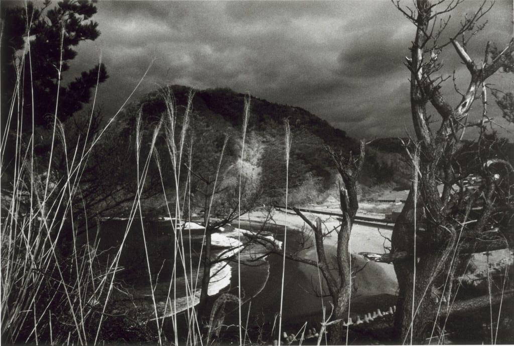 Looking through the Pampasglass, from the series Headland © Akiko Takizawa