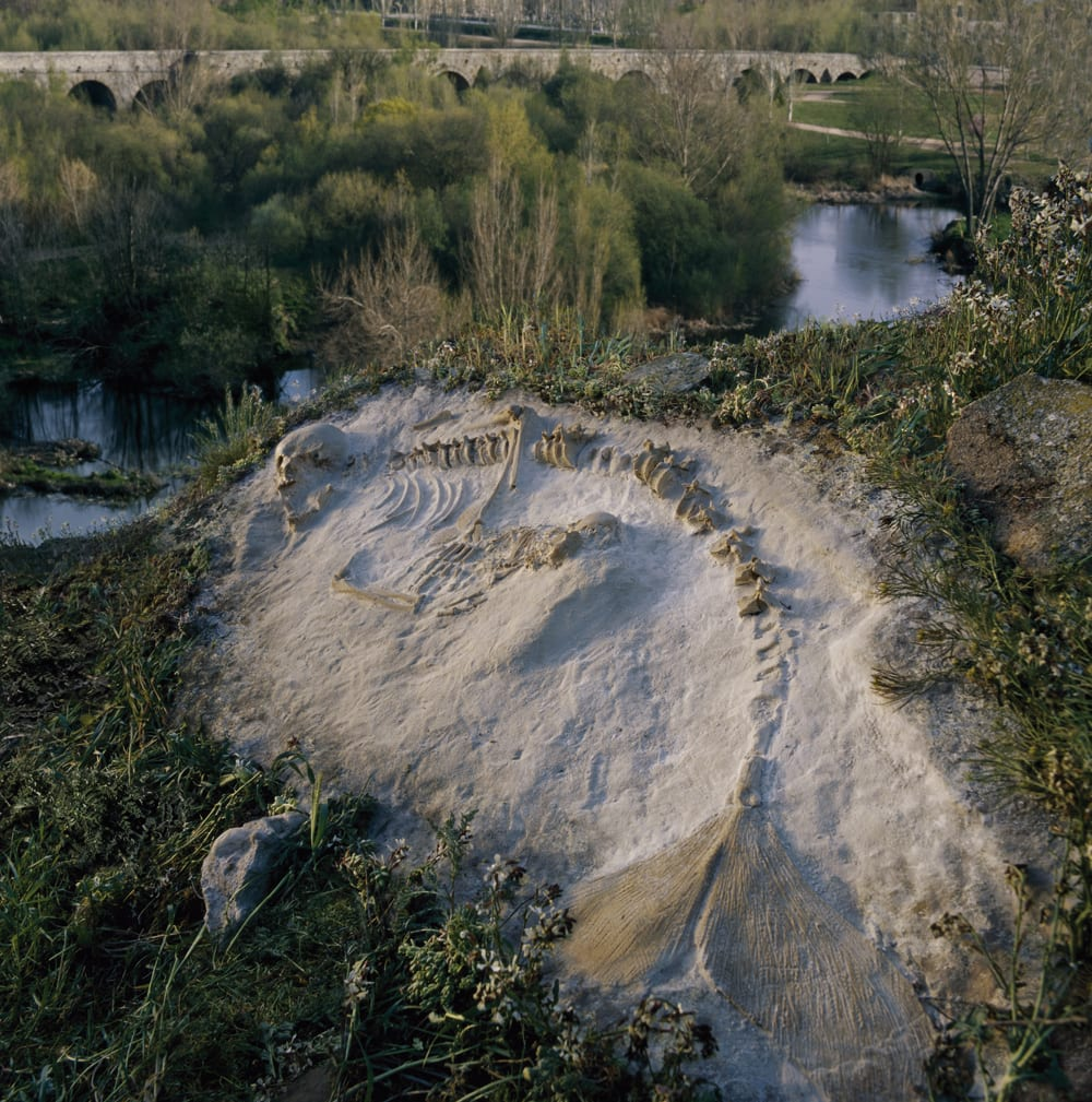 Sirena del Tormes, 2006, from Sirens (c) Joan Fontcuberta