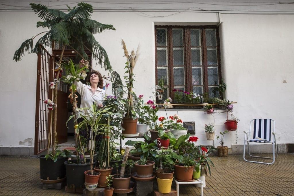 Image © Zsófia Pályi