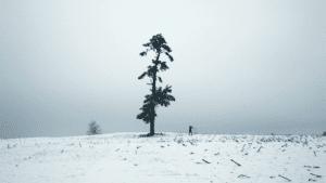 04_Traveler_Film_Still