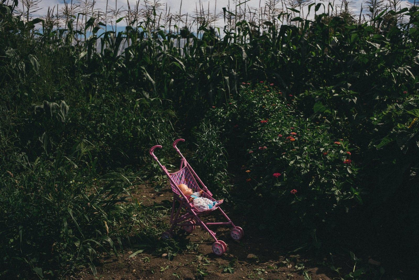 Fenner, New York. 2014 © Alexandra Hootnick