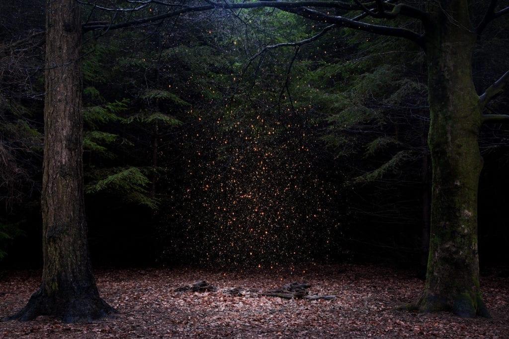 Stars,8_1