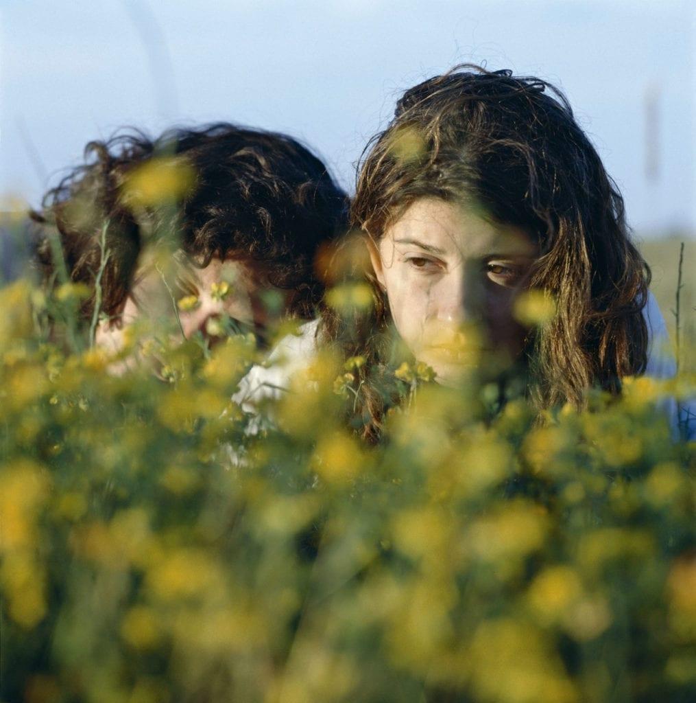 ARGENTINA. Buenos Aires. 2005. Flores Amarillas.