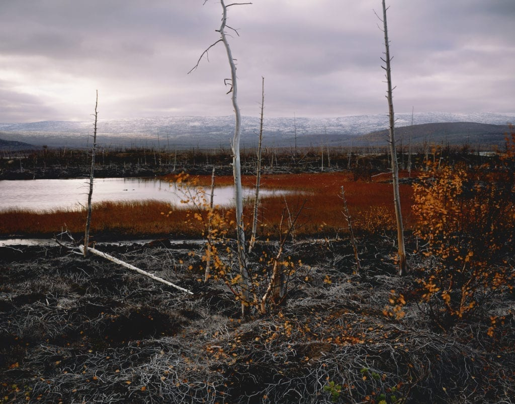 RUSSIA. Kola Penninsula. Polluted landscape affected by nickel smelter. 2006.