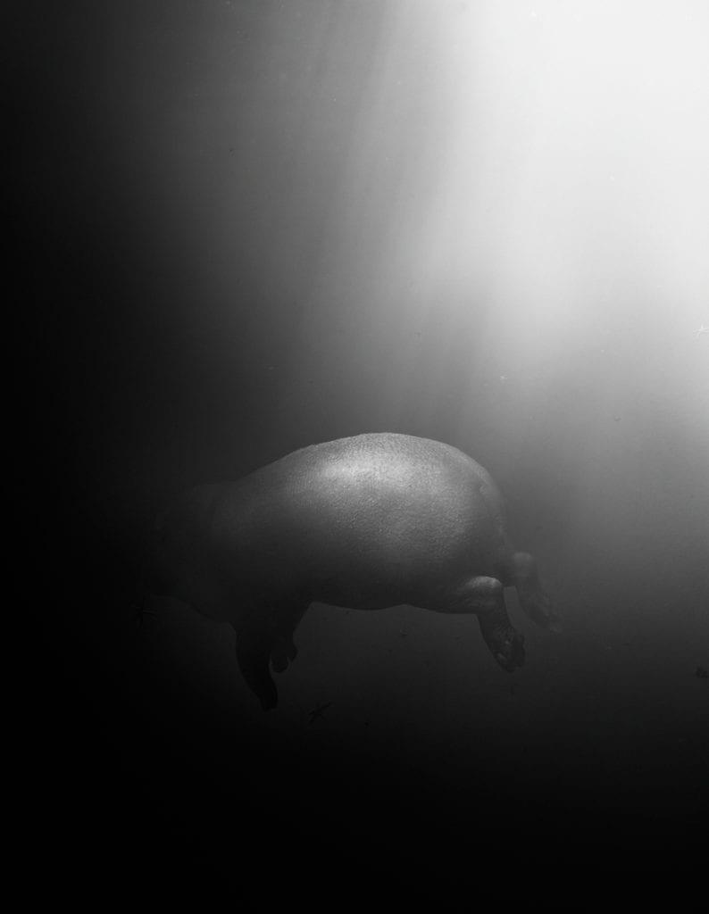 Untitled #166 © Simen Johan