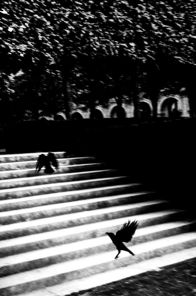 From the series White Noise Black Mirror © David Molina Gadea