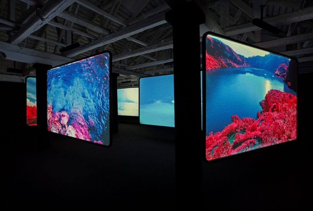 Richard Mosse's installation The Enclave, 2013 at the Venice Biennale. Image © Tom Powel Imaging inc