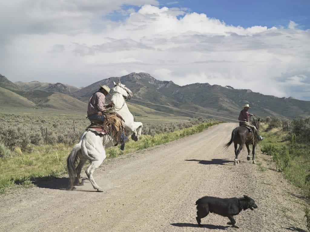 Casey and Rowdy Horse Training, 71 Ranch, Deeth, Nevada 2012 © Lucas Foglia