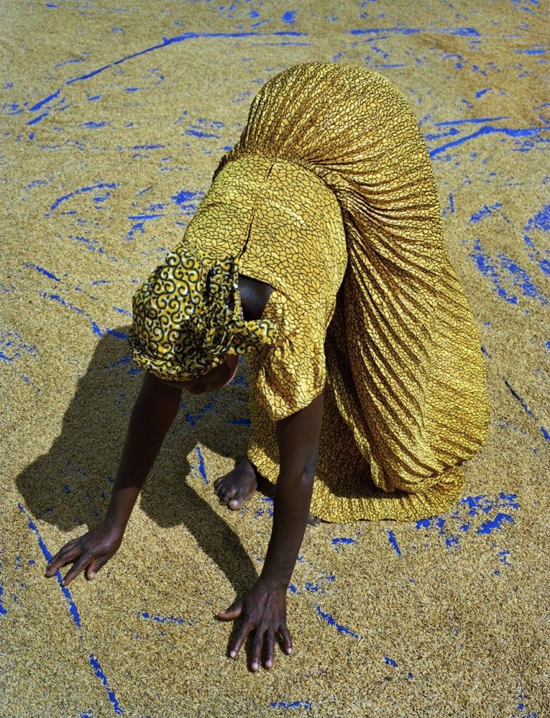 Rice Farmer, Sanwougou Lalle, Toga, 2015 © 2016 Kenneth O'Halloran