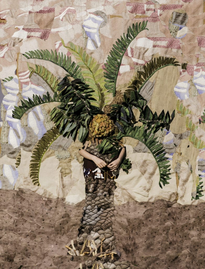 Potato Palm, 2016