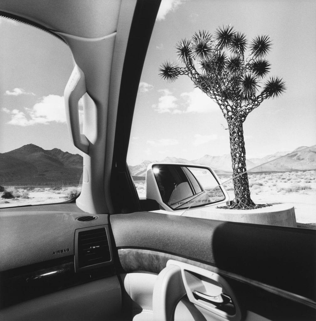 California, from the series 'America by Car', 2008 © Lee Friedlander, courtesy Fraenkel Gallery