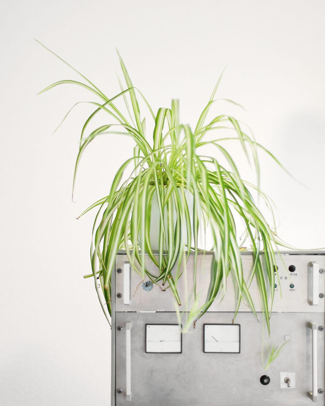 Frederik Busch photographs German Business Plants – British