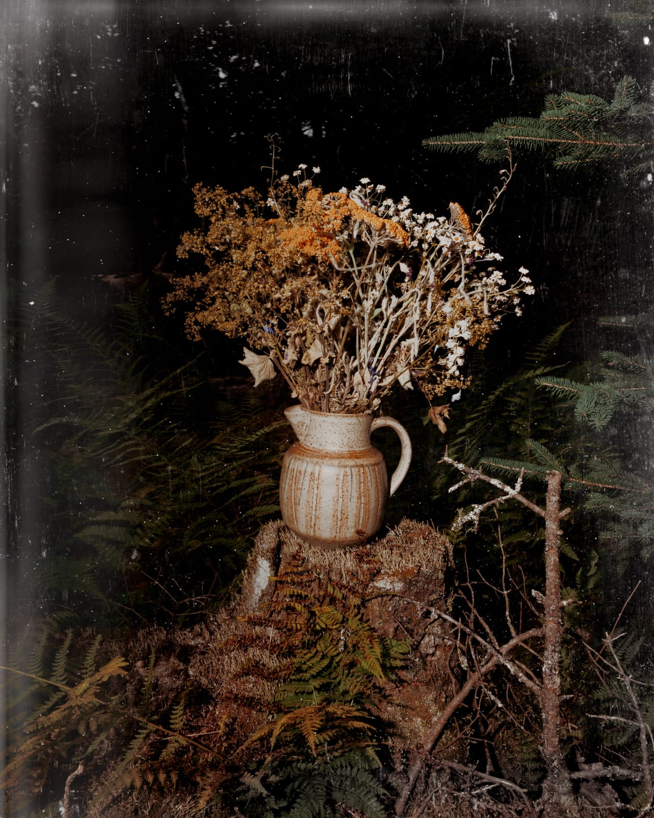 Q&A: Paul Thulin's Pine Tree Ballads – British Journal of