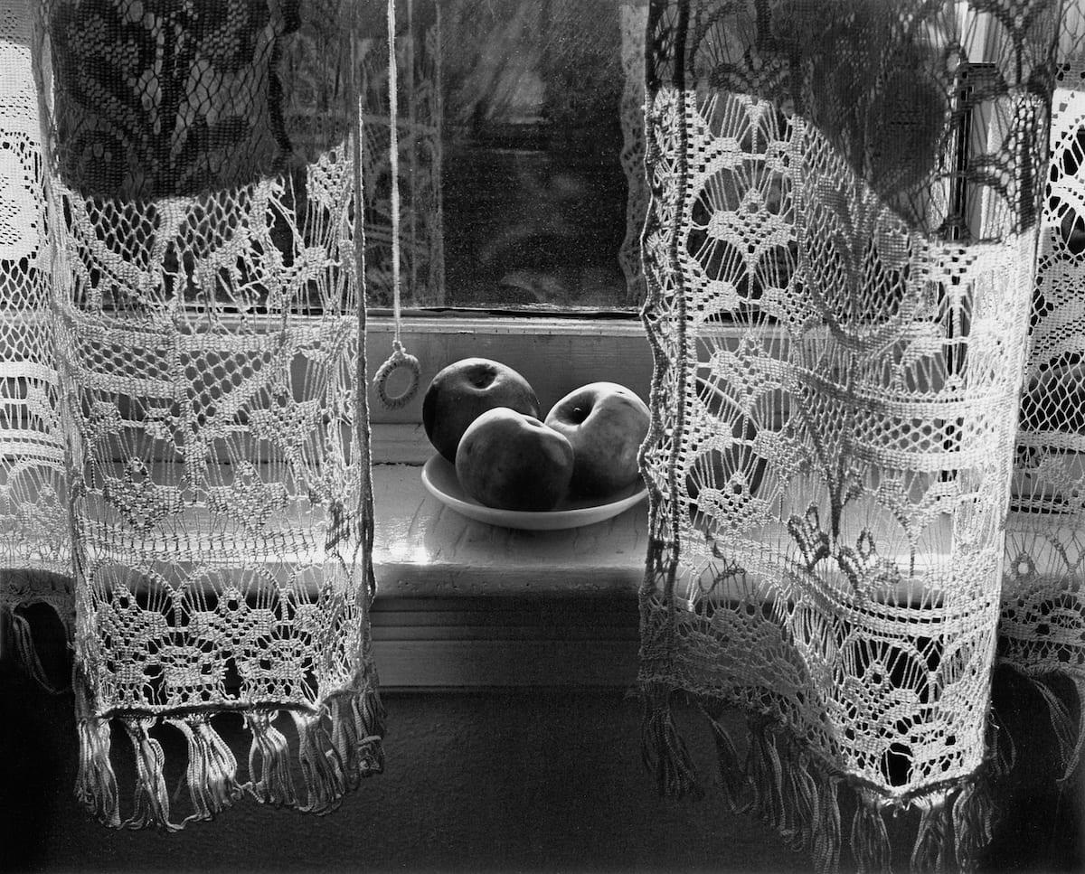 harold-feinstein-my-mothers-curtains-1946